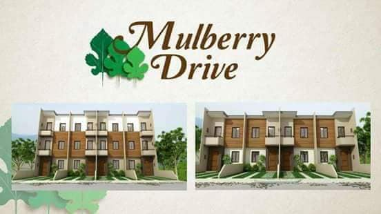 Mulberry Drive | Mulberry Drive House and Lot in Talamban, Cebu City